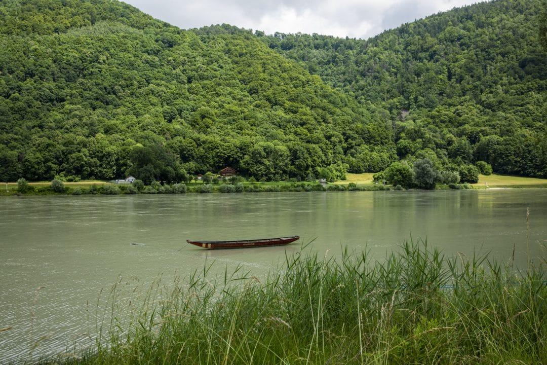 rives luxuriantes du Danube